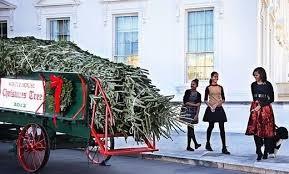 xwhite-house-christmas-tree.jpg.pagespeed.ic.o5WrR2Z7MK