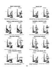 Bowflex Motivator Exercise Chart Leg Workouts Bowflex Xtl Leg Workouts