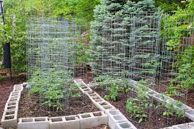 Small Picture How To Grow Vegetables All Year Long Even In Winter Raised Beds Of