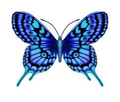 тату эскизы бабочка 28 бабочка мотылек эскизы фото тату тату
