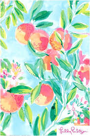 lily pulitzer wallpaper lilly wallpaper lilly
