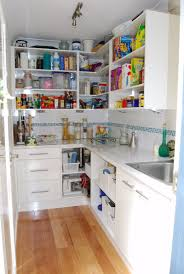 Large Pantry Cabinet Walk In Pantriesneed Much Bigger But Like The Idea Of A Sink