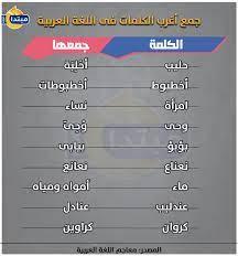 إنفوجراف.. جمع أغرب الكلمات فى اللغة العربية