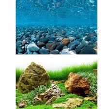 Aquarium Background Pictures Marina River Rock Sea Of Green Aquarium Background Aquarium From