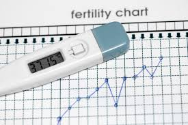3 Daily Habits To Successfully Charting Your Mens Charting