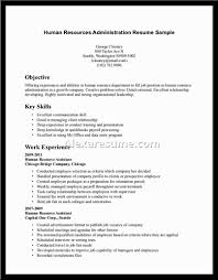 business administration section materials human resources essay outline example