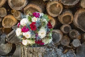 800x800 1476728218691 amandaerik wedding 4975 800x800 1487604832182 dana and timothy the big day 0082
