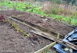 garden plastic organic gardening how to use black plastic to kill weeds garden plastic edging