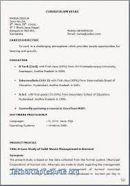 Civil Site Engineer : Resume Format Online Resume Cv India Make ...