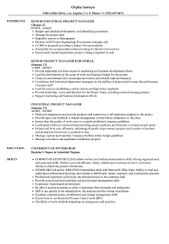 Industrial Project Manager Resume Samples | Velvet Jobs