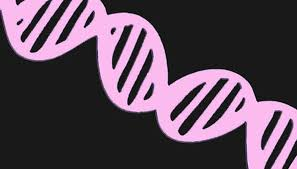 a neon pink double helix