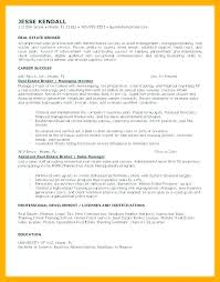 Commercial Appraiser Sample Resume Mesmerizing Real Estate Agent Resume Real Estate Appraiser Resume Example