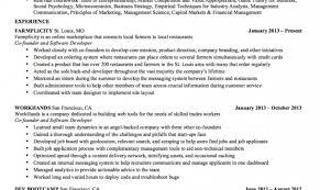 Full Size of Resume:sql Developer Resume Sample Stunning Net Developer  Resume Sql Developer Resume ...