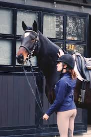 40 gift ideas for horse
