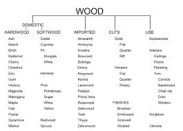 Wood Next Cc