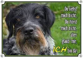 Hunderassen Schilder Hundeschild Für Hunderassen In Bester Qualität