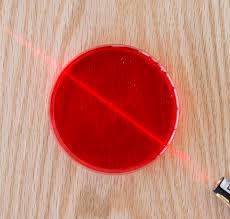 Speed Of Light In Jello Laser Jello Color Light Reflection Refraction Science