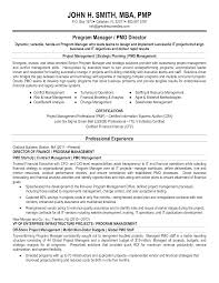 Audit Manager Resume Samples Program Manager Resume Sample Templates At
