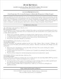 Summary For Resume Examples Beauteous Summary Statement For Resume Summary Statement For Resume Resume
