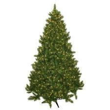 Laurel Foundry Modern Farmhouse 7.5' Evergreen Fir Artificial Christmas Tree  with 700 Clear Lights