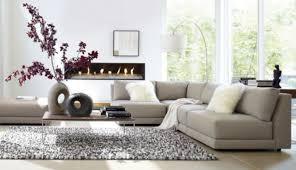 Decoration And Design Livingroom Tips and Ideas Decor Advisor 13