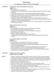 Accounting Project Manager Resume Samples | Velvet Jobs