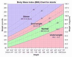 Men Body Chart Body Mass Index Chart Male Unique Body Mass Chart For Men