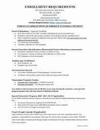 Examples Of Executive Resumes Certificate Of Guardianship Template