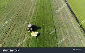 grass field aerial. Aerial Photo Of Meadow Grass Landscape And Farmer In Tractor Mowing Green Field After The F