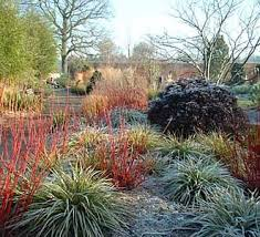 Small Picture Garden Design Garden Design with How to Design a Winter Garden