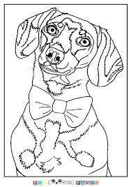 Dachshund Coloring Pages Nd Coloring Page Pages Printable For Adults