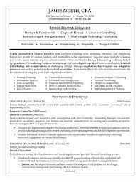 It Consultant Resume Sample Financial Consultant Resume Example