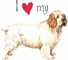 clumber spaniel gifts gift ideas