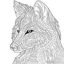 Witte Wolf Vectoren Illustraties En Clipart 123rf
