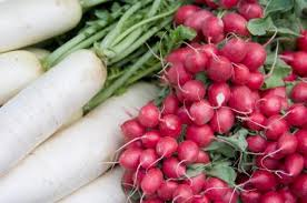 Types Of Radishes Chart Which Vegetables Grow Well Together Lovetoknow