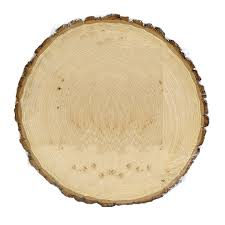 Round Plaque By ArtMinds, Basswood