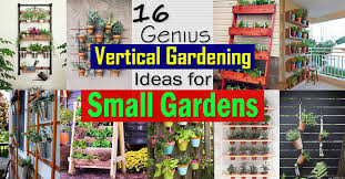 small gardens landscaping ideas. 16 Genius Vertical Gardening Ideas For Small Gardens | Balcony Garden Web Landscaping
