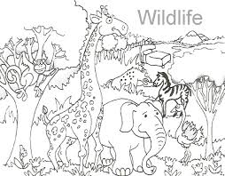 Wealth Wild Animal Coloring Pages Animals To P 6251