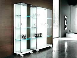 glass bookshelves bookshelves