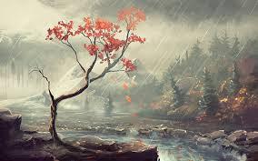 Resultado de imagen de rain in the forest