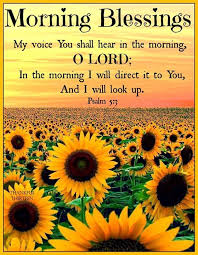 Blessed Morning Quotes Fascinating Religious Morning Blessings Quote Pictures Photos And Images For
