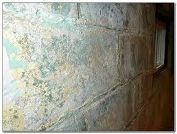 how to remove mold from painted basement walls