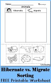 Hibernation vs. Migration: Animal Sorting Worksheet | Free ...