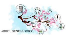 ARBOL GENEALOGICO by Cristel Plasencia