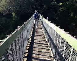 Image result for hunua falls auckland