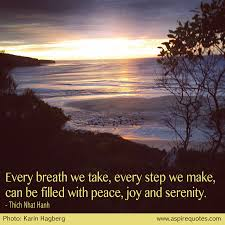 Peace Joy And Serenity Aspire Quotes