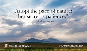 Ralph Waldo Emerson Quotes On Nature And Patience Themindquotes Fascinating Emerson Nature Quotes
