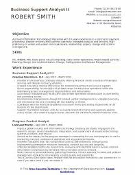 Business Resume Samples Business Support Analyst Ii Resume Sample