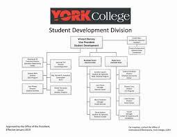 Organizational Chart York College Cuny