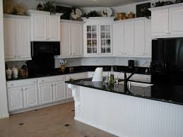 White Kitchen Cabinets With Black Appliances Natural Green Floral ...